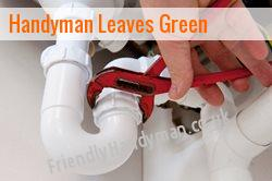 handyman Leaves Green